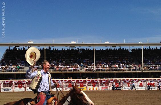 Cowboy Calgary Stampede 2012
