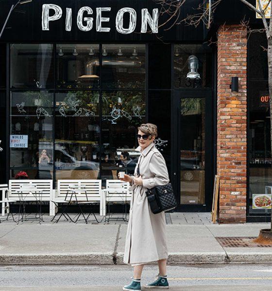 Pigeon Bar à Espresso