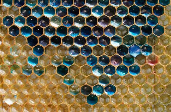 coloured honeycomb